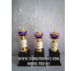 Penjual Piala Murah -Contoh Piala Murah hanya di Sigma Trophy Set TRB-013