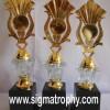 Piala Kristal, Plastic Trophies, Trophies Awards, Jual Trophies, Jual Plastic Trophies-BRC-001c