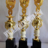 Trophy awards,trophy medal,trophy Gold -BRB-004b
