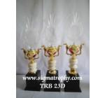 Pusat Trophy Murah Meriah