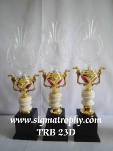 Piala Trophy Crystal - TRB 23 D