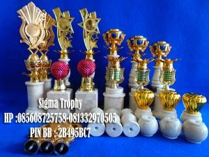 Sigma Trophy (8)